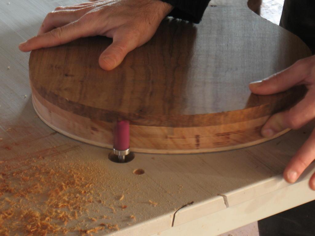 Grellier guitars pictures - Fabriquer une guirlande electrique ...